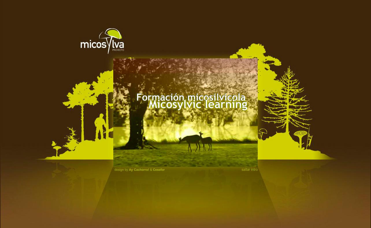 Intro Proyecto Micosylva Instituto Europeo de Micología